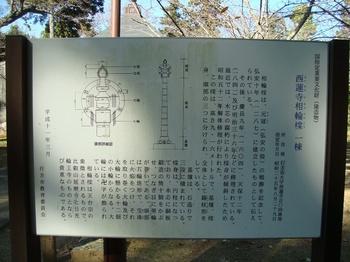 DSC04896.JPG