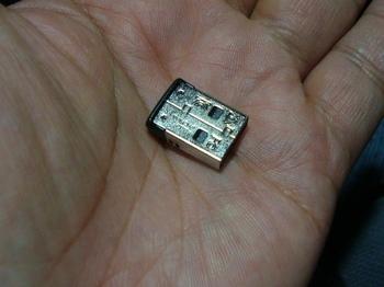 DSC08447.JPG